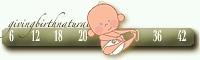 Free Pregnancy Tickers